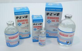 Как вылечиться от паразитов: самые эффективные препараты