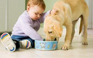 Как вывести гельминтоз у детей от 1 до 5 лет?