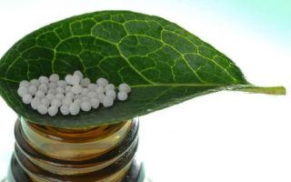 Поможет ли гомеопатия справиться с гельминтами?