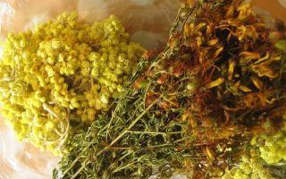 Избавляемся от глистов: лекарственные растения