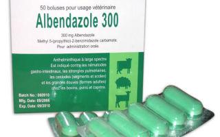 Какими препаратами можно почистить организм от паразитов