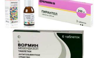 Как уничтожить паразитов в организме: основные препараты
