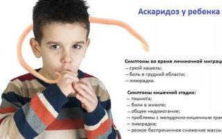 Что нужно знать об аскаридах у детей