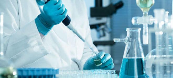 Исследование крови на антитела к эхинококкам