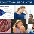 Паразиты в организме человека: эффективные методы диагностики
