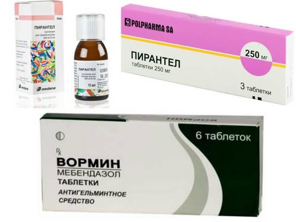 Антипаразитарные средства для человека