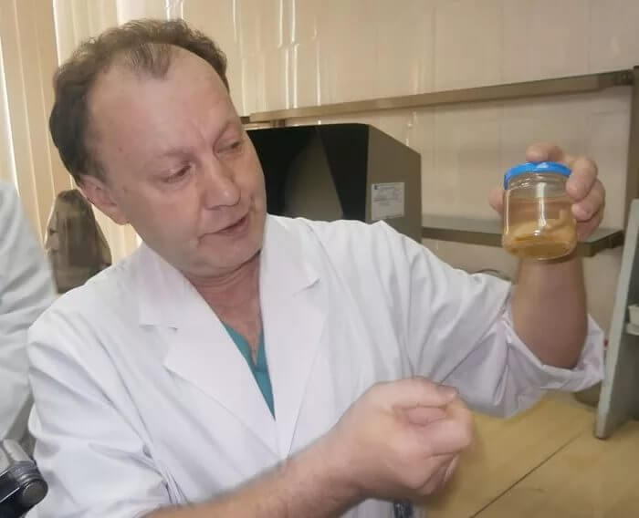 Врач держит образец паразита