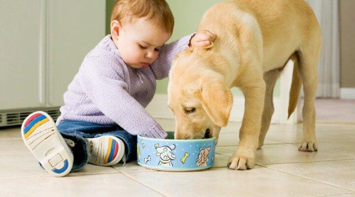 Признаки глистов у детей до года